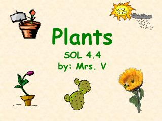 Plants SOL 4.4 by: Mrs. V