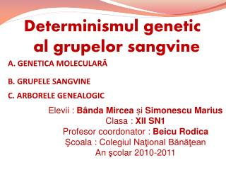 Determinismul  genetic  al  grupelor  sang v ine