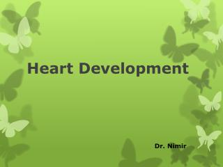 Heart Development