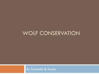 Wolf Conservation