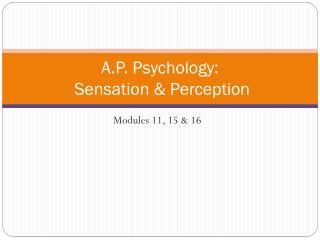 A.P. Psychology:  Sensation & Perception