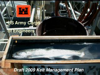 Draft 2009 Kelt Management Plan
