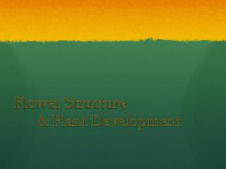 Flower Structure  	& Plant Development