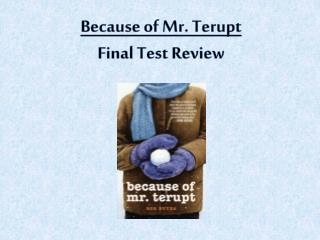 Because of Mr. Terupt Final Test Review