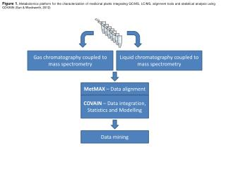 Gas  chromatography coupled to mass spectrometry