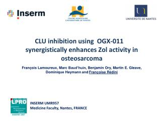 CLU inhibition  using   OGX-011  synergistically enhances Zol activity  in  osteosarcoma