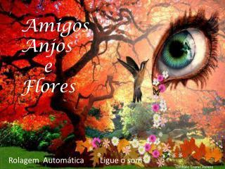 Amigos  Anjos    e Flores
