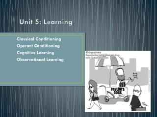 Unit 5: Learning