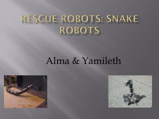 Rescue Robots: Snake Robots