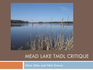 Mead Lake TMDL Critique