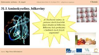 31.1 Aminokyseliny, bílkoviny