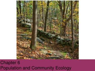 Chapter 6 Population and Community  Ecology