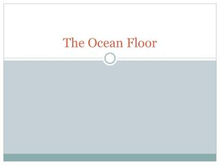 The Ocean Floor