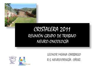 CRISTALERA 2011 REUNIÓN GRUPO DE TRABAJO  NEURO-ONCOLOGÍA