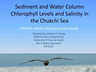 Sediment and Water Column Chlorophyll Levels and Salinity in the Chukchi Sea