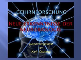 Gehirnforschung  neue Erkenntnisse der Neurobiologie