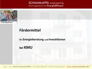 Fördermittel  für  Energieberatung  und  Investitionen  bei  KMU