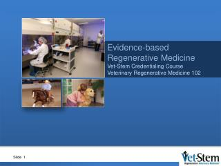 Evidence-based Regenerative Medicine Vet-Stem Credentialing Course