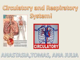 Circulatory and Respiratory  System!