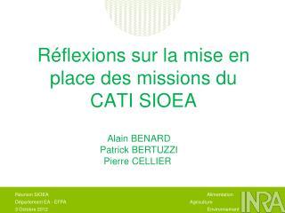 Réflexions sur la mise en place des missions du CATI SIOEA
