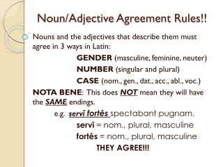 Noun/Adjective Agreement Rules!!
