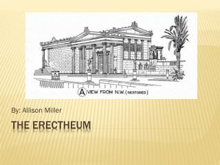 The erectheum