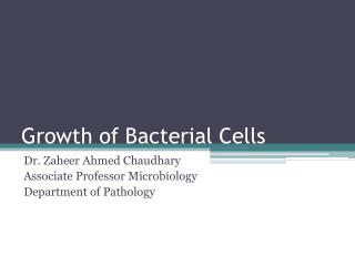 Growth of Bacterial Cells