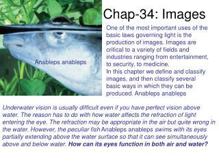 Chap-34: Images