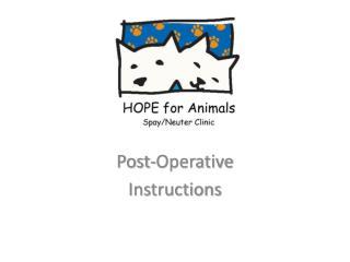 Post-Operative Instructions