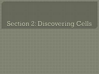 Section 2: Discovering Cells