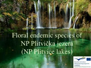 Floral endemic species of   NP Plitvička jezera  (NP Plitvice lakes)