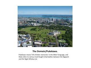 The Domain/ Pukekawa .