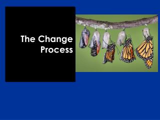 The Change Process