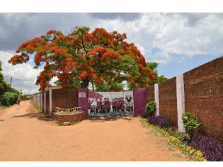 The Jacaranda School