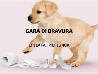 GARA  DI  BRAVURA