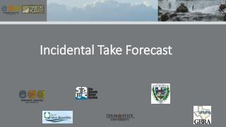 Incidental Take Forecast