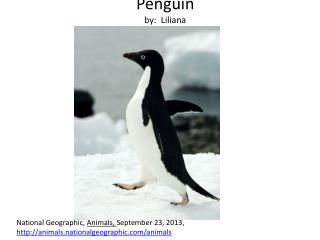 Penguin by:   Liliana