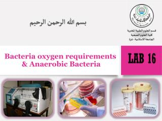 Bacteria oxygen requirements  &  Anaerobic Bacteria