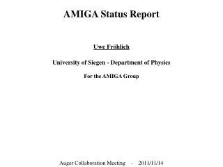 AMIGA Status Report