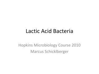 Lactic Acid Bacteria