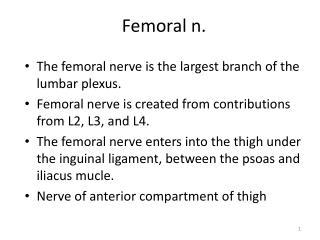 Femoral n.