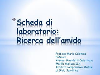 Scheda di    laboratorio: Ricerca dell'amido