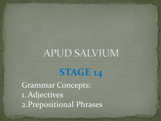 APUD SALVIUM