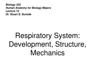 Biology 323 Human Anatomy for Biology Majors Lecture 12 Dr. Stuart S. Sumida