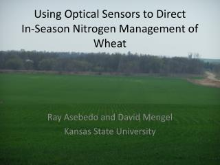 Using Optical Sensors to Direct        In-Season Nitrogen Management of Wheat