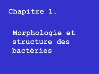 Chapitre 1.     Morphologie et structure des bact ries
