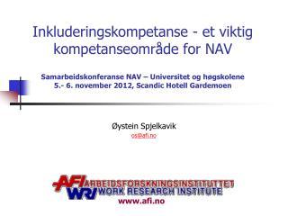 Øystein Spjelkavik  os@afi.no