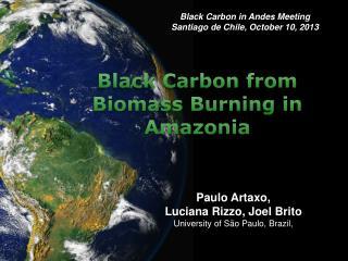 Paulo Artaxo , Luciana Rizzo, Joel  Brito University of São Paulo, Brazil ,