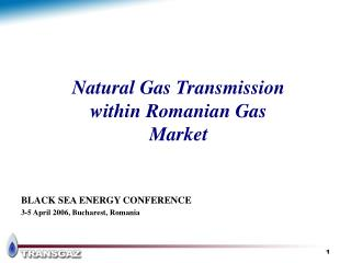 Natural Gas Transmission  within Romanian Gas  Market