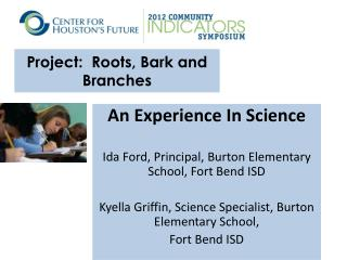 Project:  Roots, Bark and Branches